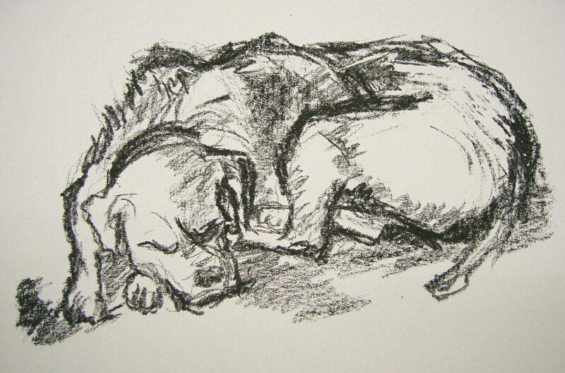 """Abbildung 1: """"Schlafender Hund I"""" von Volker Scharnefsky"""