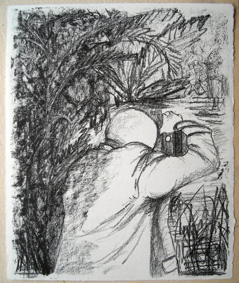 """Abbildung von """"Das Brandenburger Tor im Regenwald, Blatt 1"""""""