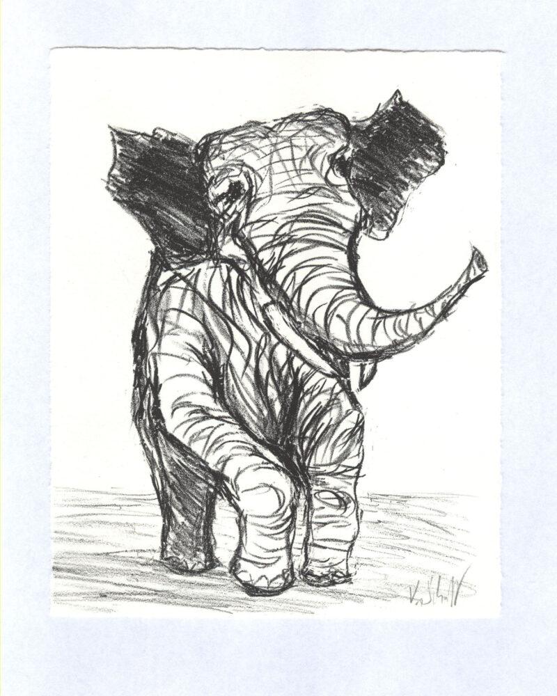 """Abbildung 1: """"Großes Tier ganz klein"""" von Volker Scharnefsky"""