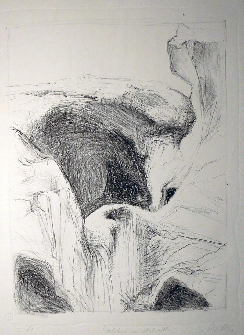 """Abbildung von """"Höhlenlandschaft"""""""
