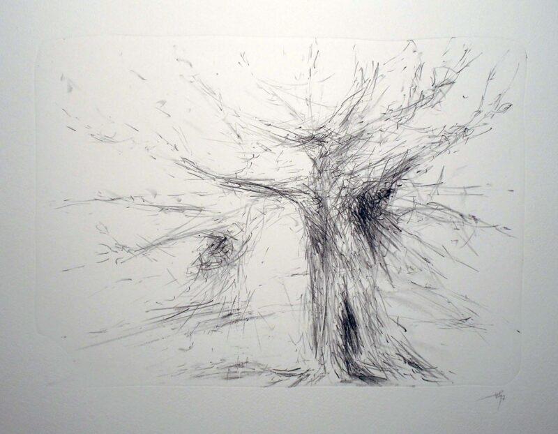 """Abbildung von """"(Bäume)"""""""