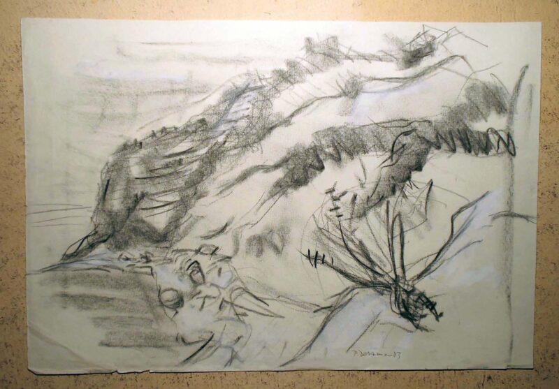 """Abbildung 1: """"Hiddensee II"""" von Peter Dettmann"""