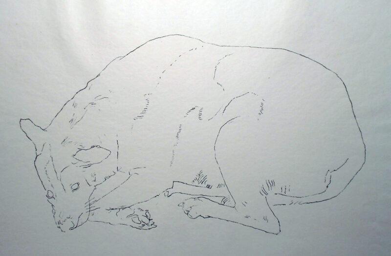 """Abbildung 1: """"(Schlafender Hund)"""" von Rudi Lesser"""