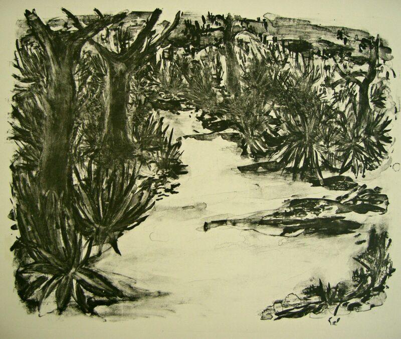 """Abbildung von """"Landschaft auf Mallorca"""""""