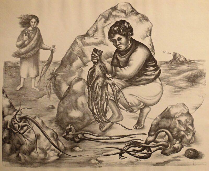 """Abbildung von """"Ernte der Cochayuyo-Algen"""""""