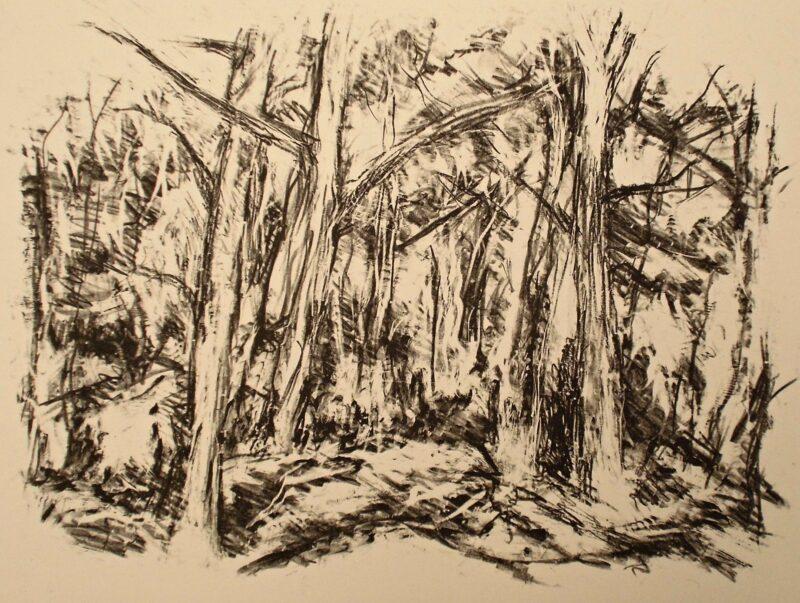 """Abbildung von """"Waldeingang"""""""