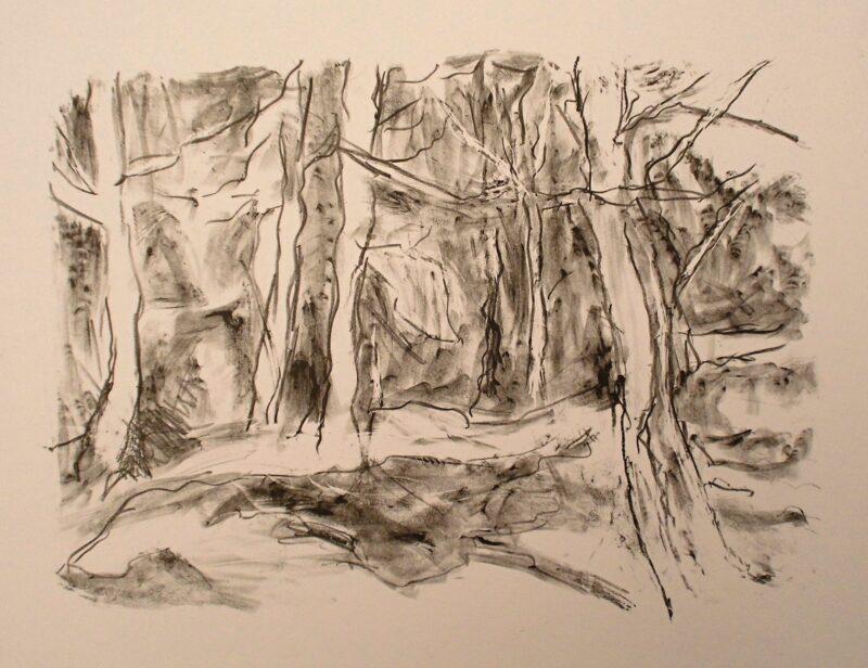 """Abbildung von """"Waldeingang (II)"""""""
