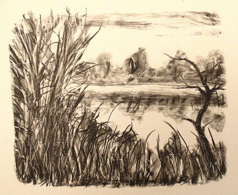 """Abbildung von """"Ufer mit Totholz"""""""