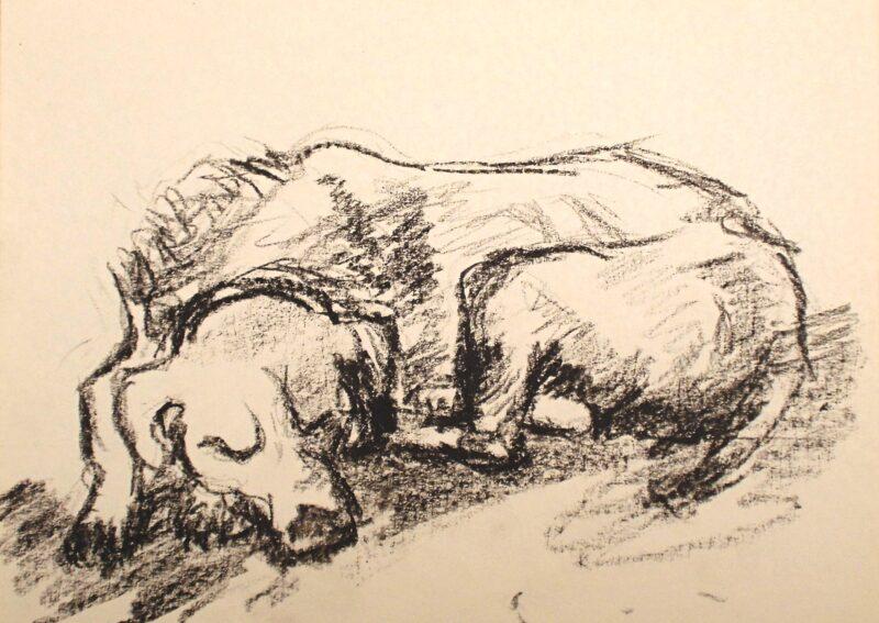 """Abbildung von """"Schlafender Hund"""""""