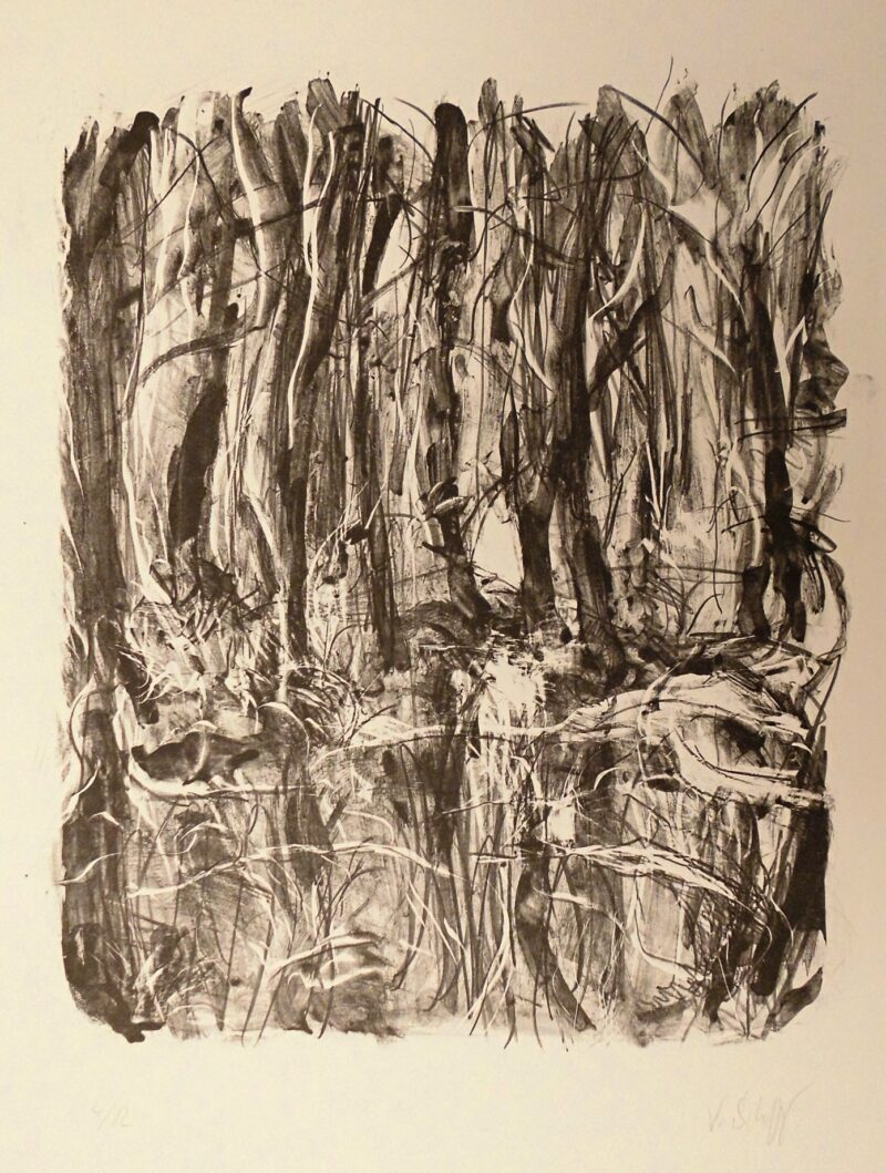 """Abbildung von """"Erlenwald"""""""